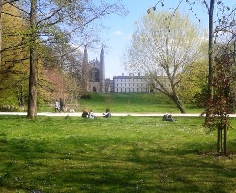 Cambridge Exams May 2015